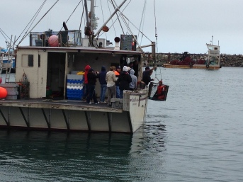 Using a trawl box to lift