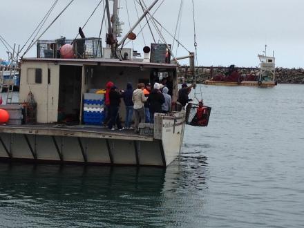 Using a trawl box to lift