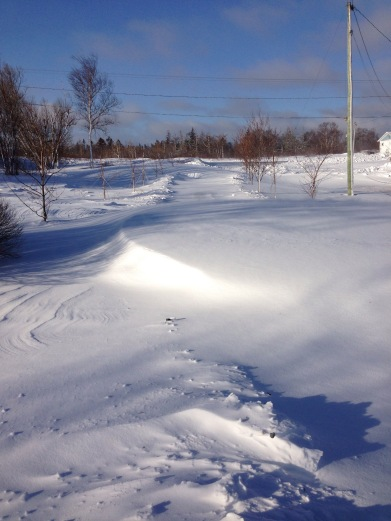 My driveway. The drift is around 4 feet.