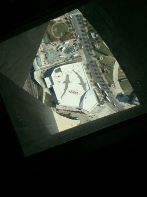 Aquarium from CN Tower glass floor. That's as close as I got to walking out on it.